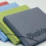 Folder with elastic closure